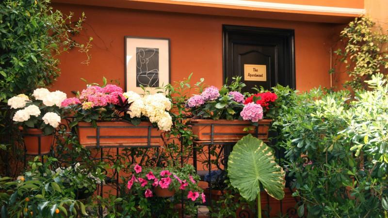 Hotel-Modigliani-appartamento-giardino-IMG-2409